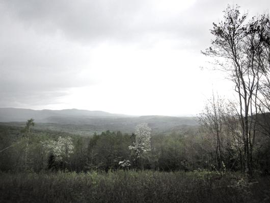 1-paysage