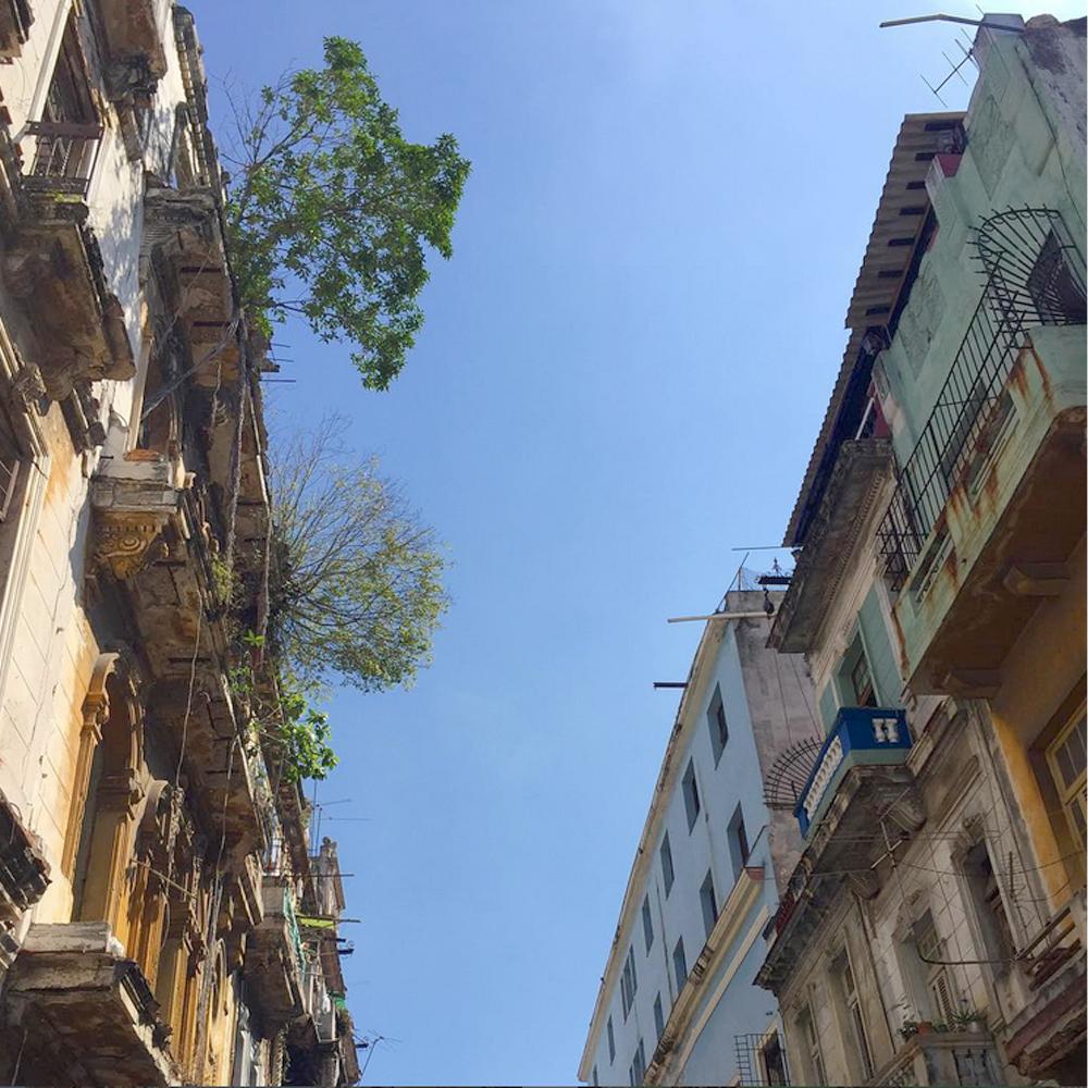la Havane 03 - 1000